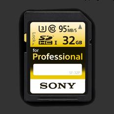 Professional SD 32GB Memory Card