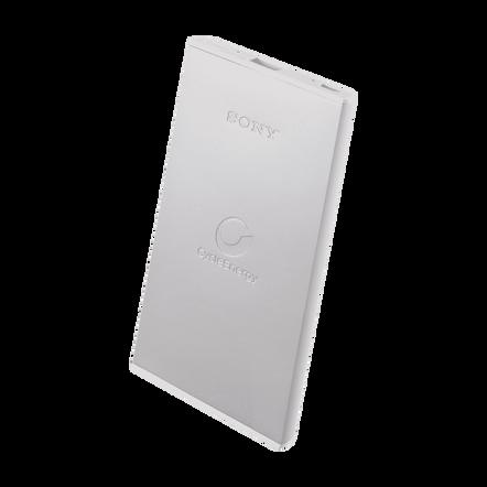 Portable USB Charger5000mAH (Silver)