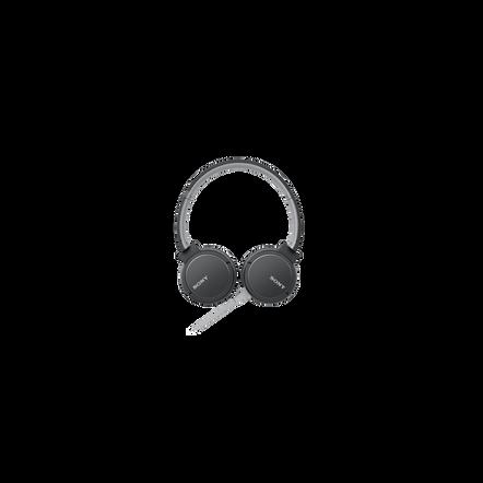 ZX660AP Headphones (Black)