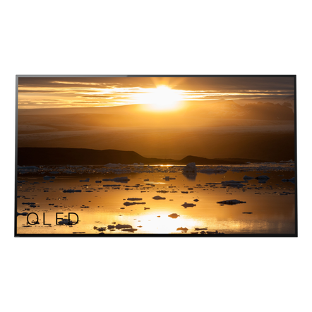 "65"" A1 4K HDR OLED TV with Acoustic Surface"