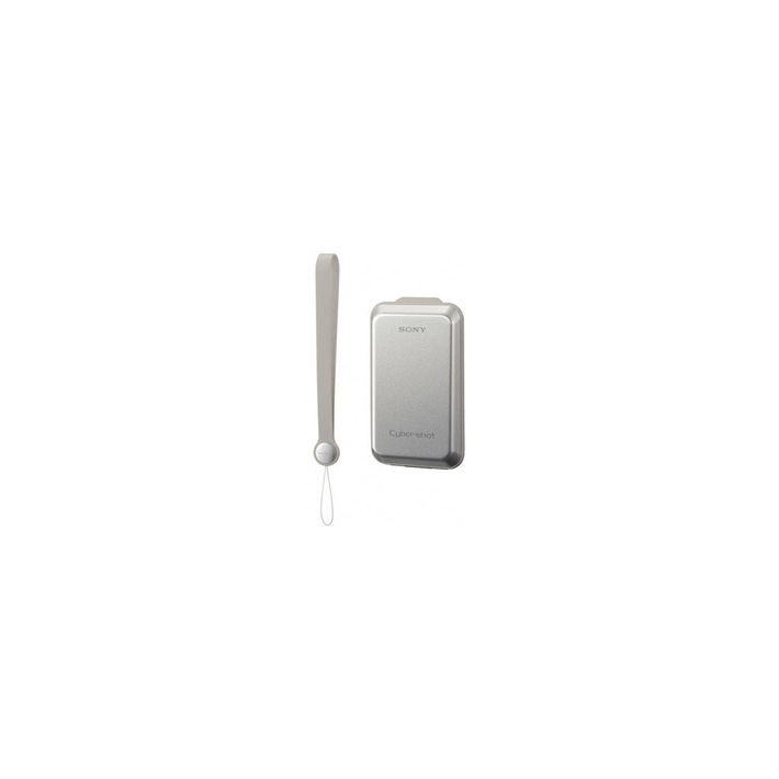Hard Carrying Case (Silver), , product-image
