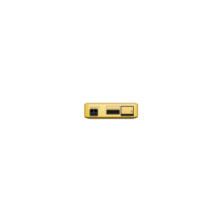 Premium Walkman with High-Resolution Audio