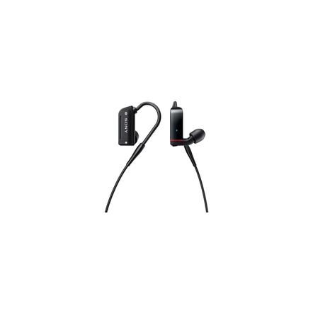 Sony Balanced Armature Headphones