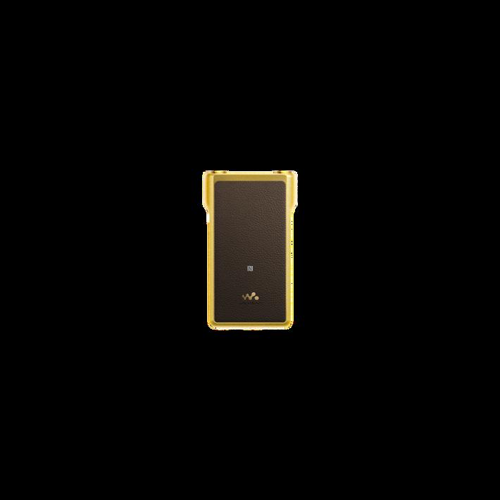 Premium Walkman with High-Resolution Audio, , product-image