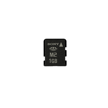 1GB Memory Stick Micro? M2, , hi-res