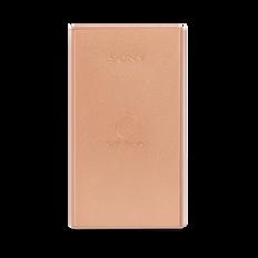 Portable USB Charger 5000mAH (Copper)