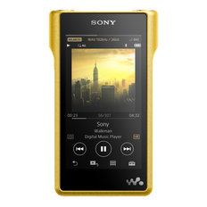 Premium Walkman with High-Resolution Audio