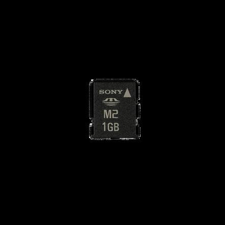 1GB Memory Stick Micro? M2, , hi-res