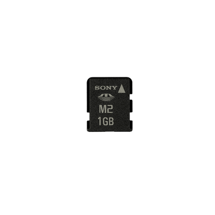 1GB Memory Stick Micro? M2