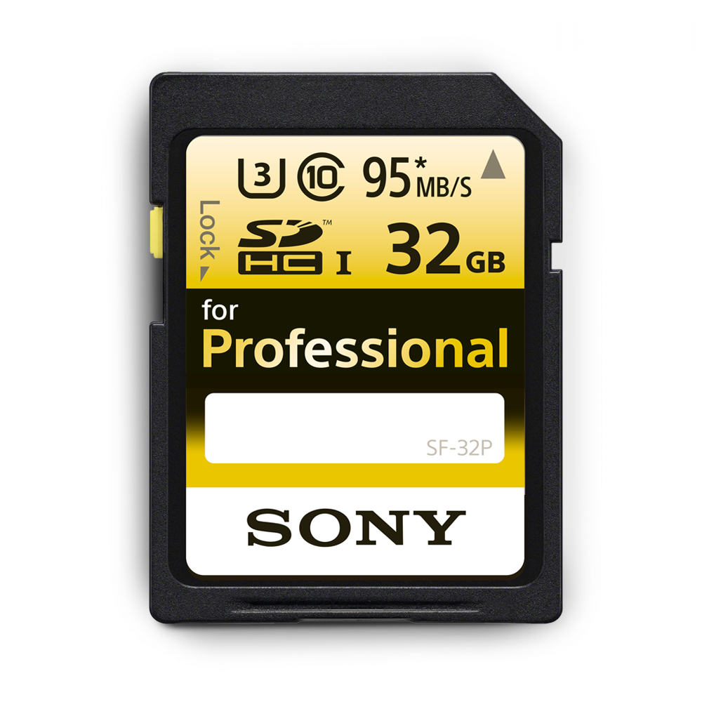 Professional SD 32GB Memory Card, , product-image