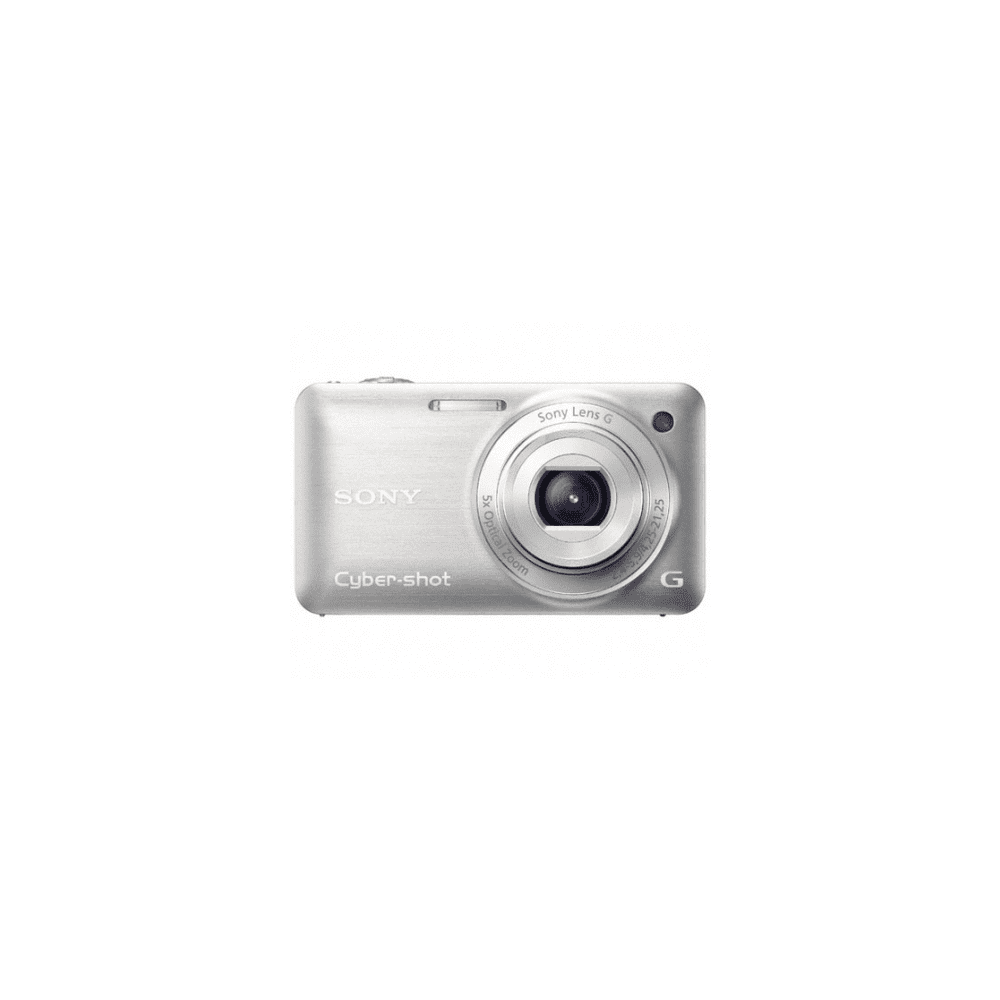 12.2 Mega Pixel W Series 5x Optical Zoom Cyber-shot (Silver)