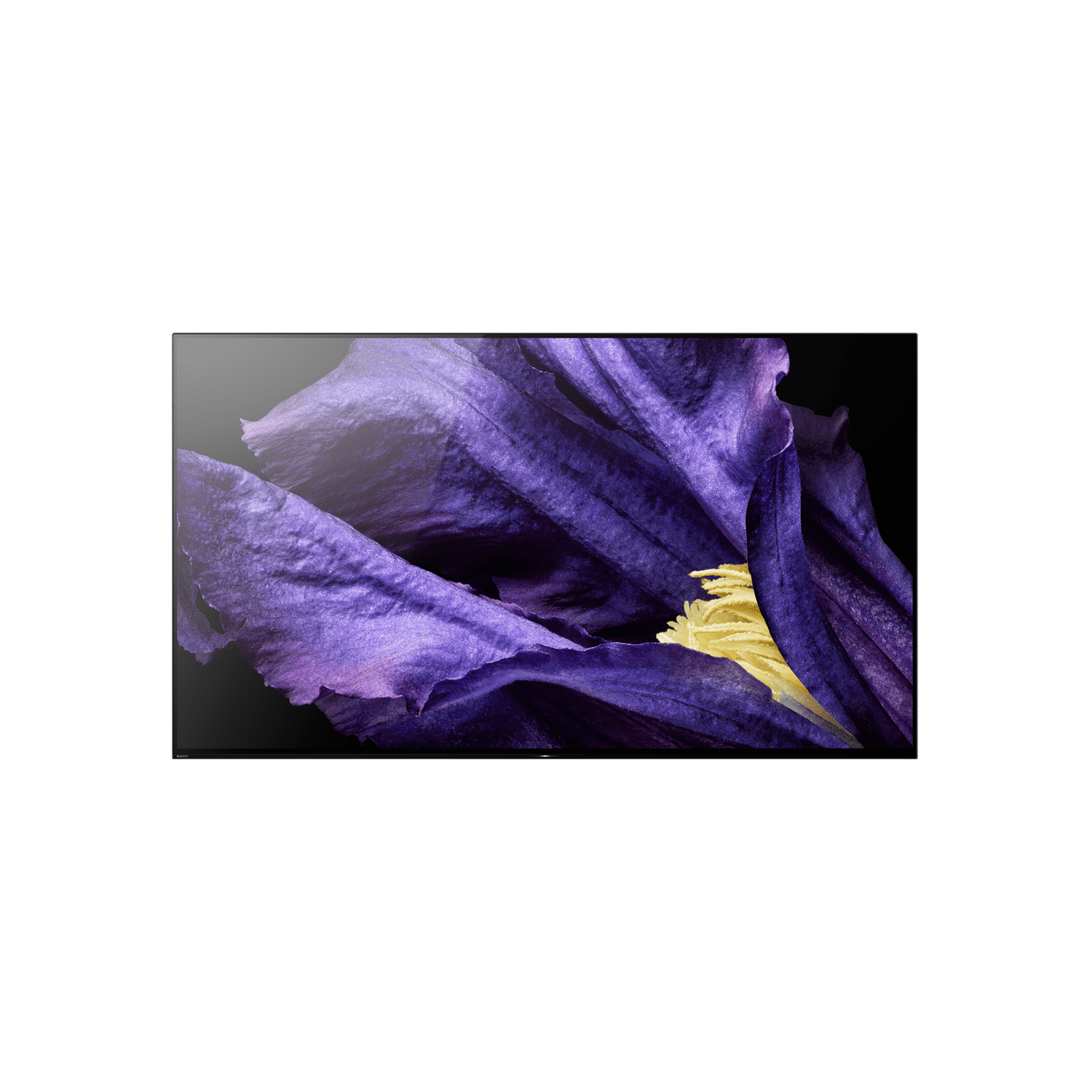"65"" A9F Master Series OLED 4K Ultra HDR Android TV"